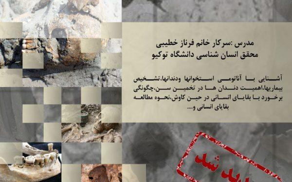 کارگاه آشنایی با مبانی باستان آسیب شناسی و انسان شناسی دندانی در موسسه باستان شناسی دانشگاه تهران