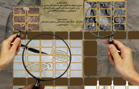 کارگاه یک روزه باستان انگل شناسی و چگونگی بهره برداری از بقایای بیولوژیک در محوطه های باستانی ، در موسسه باستان شناسی دانشگاه تهران